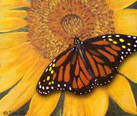 Sunflower & Butterfly Painting