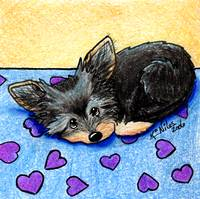 Yorkie With Heart