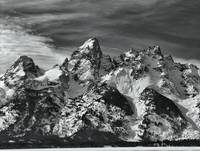Teton's Black and White Majesty
