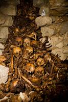 Paris Catacombs: Cimetiere Montrouge Skulls #2