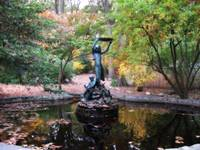 Autumn Fountain