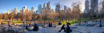 Relaxing In The Park- Central Park