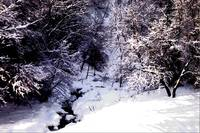 Winter Creek Digital Artwork