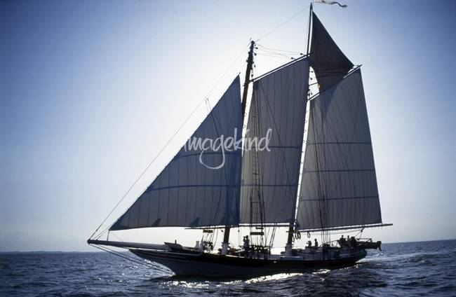Back Lit Pungy Schooner Lady Maryland