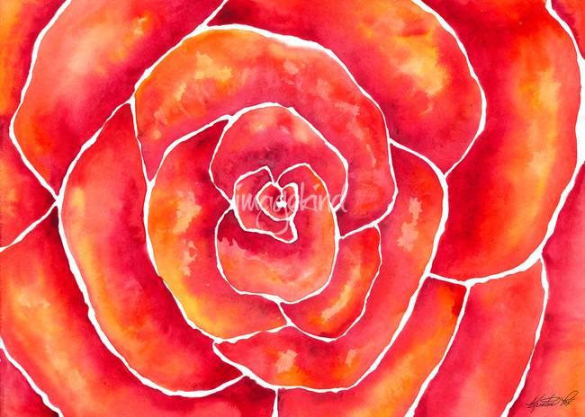 Red-Orange Rose Watercolor