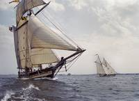 Topsail Schooner Pride Of Baltimore ll and Alcyone