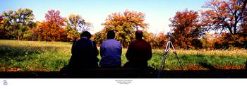 Bird Watchers Bench fall crab tree nature center