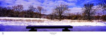 Bird Watchers Bench winter crab tree nature center
