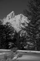 Grand Teton Black & White