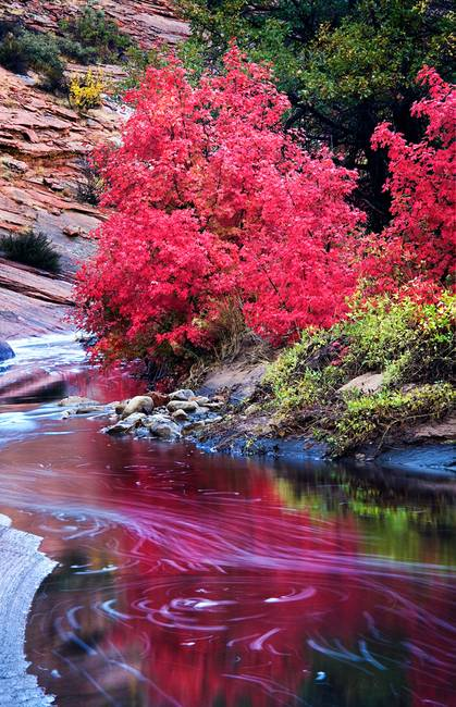 Upper Zion In Fall