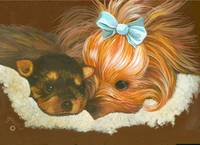 Yorkshire Terrier Mama with Puppy