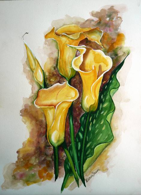 YELLOW CALLAS