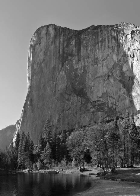 Afternoon Light on El Capitan