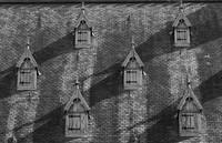 B&W: Geometry of the Roofs