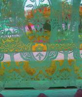 Bluegreen Lace in the window