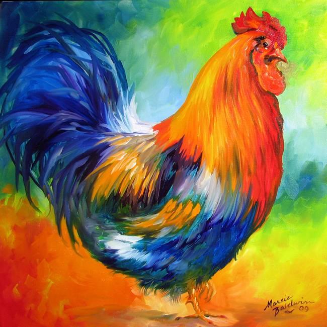 fine art rooster artwork for sale on fine art prints