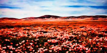 Antelope Valley Poppy Fields Watercolor Panorama