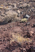 Cinders from extinct volcano in Panamint Valley, C