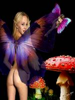 Faeries and Mushrooms