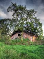 Dilapidated HDR Barn2