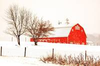 _MG_7281 - Barn in Winter Storm - Indiana - 2010