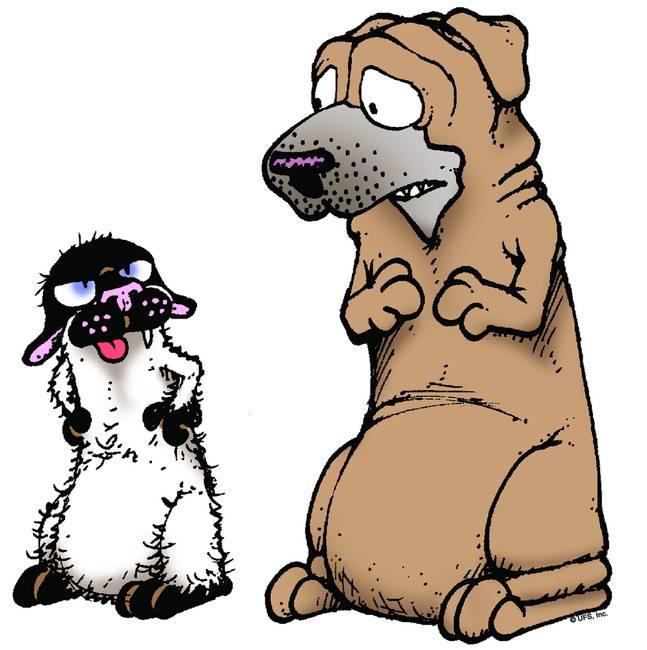 Satchel Worried - Get Fuzzy