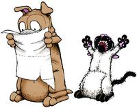 Bucky Disgust - Get Fuzzy by Art by Comics.com