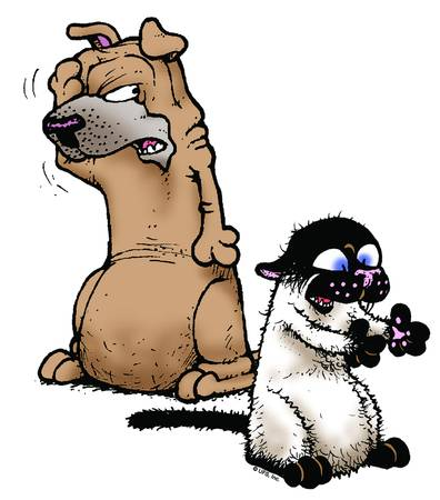 Satchel Disgust - Get Fuzzy