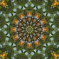 Yellow Tree Flower Kaleidoscope Art 2