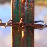 Barbed Wire and Rust Cross