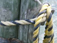 Dock Knot