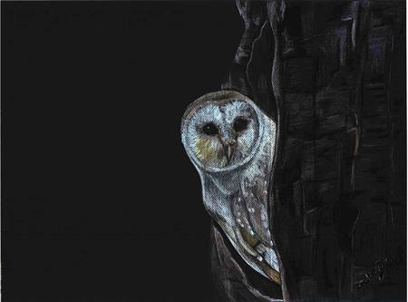 Owl by Emily Dewbre-Young