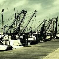 The docks Art Prints & Posters by Isabel Saldana