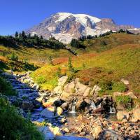 Mt Rainier in Autumn Art Prints & Posters by Patricia Daniel