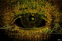 Eye See Over Mountains (Gold)