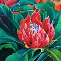Protea Art Prints & Posters by Rebecca Foster