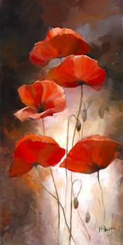poppies by artist Willem Haenraets. Giclee prints, art prints, posters, a floral, five red poppies; from an original  painting