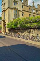 Cambridge, late Spring 6 by Priscilla Turner