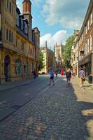Cambridge, late Spring 7 by Priscilla Turner