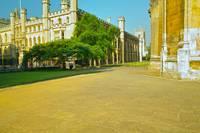 Cambridge, late Spring 10 by Priscilla Turner