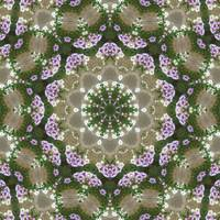 Mauve and White Lantana Kaleidoscope Art 2