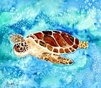 sea turtle sea life painting print