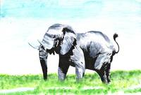 Acrylic painting of elephant in africa