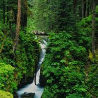 """Log footbridge crossing over Sol Duc Falls ; River"" by JohnChaoPhoto"