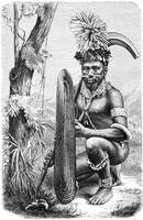 Solomon Islands Warrior