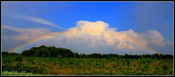 Rainbow over the Steinhatchee River