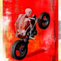 Skeleton Biker by Greg Simanson
