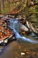 Mill Creek Tributary #1 (IMG_9059) by Jeff VanDyke