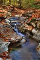 Mill Creek Tributary #2 (IMG_9078) by Jeff VanDyke