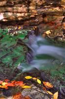 Mill Creek Tributary #4 (IMG_9096) by Jeff VanDyke